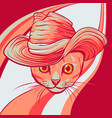 cat in a hat vector image