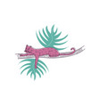 pink leopard sleeps on branch of palm tree large vector image