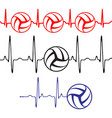 pulse volleyball set vector image vector image