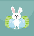 rabbit logo design vector image vector image