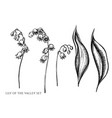 Set hand drawn black and white lily of