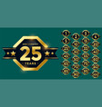 stylish anniversary label and badge set in golden vector image vector image