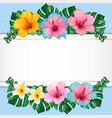 watercolor hibiscus flowers and tropical leaves vector image vector image