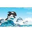 Dolphines swimming in the ocean vector image