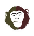 isolated abstract monkey face vector image vector image