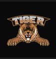 logo tiger mascot team sport vector image vector image