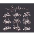 Personal name Sophia vector image vector image
