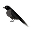 raven or crow bird icon in flat design vector image vector image