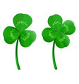 set green shamrock clover leaf with dew drops vector image vector image