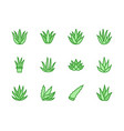 aloe vera flat line icons succulent tropical vector image vector image