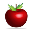 apple isolated icon vector image vector image