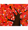 Autumn crown of a tree vector image vector image