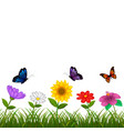 beautiful view with the different flower vector image