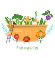 cute funny vegetable characters in salad bowl vector image