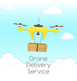 dron delivery service drone vector image