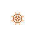flower linear logo orange line art sun vector image vector image