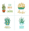 hand-drawn cacti succulents and lettering vector image