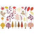 set botanical elements in autumn colors vector image