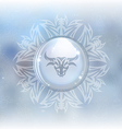snow globe with zodiac sign Taurus vector image vector image