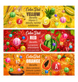 vitamin in fruits and veggies color diet days vector image vector image