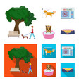 walking with a dog in the park combing a dog a vector image