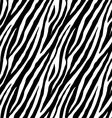 Zebra repeated seamless pattern vector image vector image