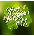 Patrick day lettering greeting card or background vector image vector image