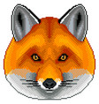 pixel red fox portrait detailed isolated vector image