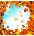 autumn leaf border vector image vector image