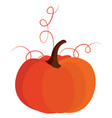 big pumpkin on white background vector image vector image