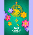 chinese new year 2019 colorful paper pig card vector image vector image