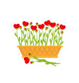 basket and flowers hearts vector image vector image
