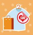 big discounts shopping sales vector image