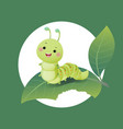 cartoon caterpillar chewing green leaf vector image