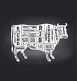 cow beef scheme diagram chart pork butcher vector image vector image