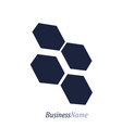 geometry design emblem vector image vector image