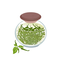Jar of Pickled Green Chili Peppers with Malt Vineg vector image vector image