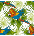 pattern with macaw parrots and palm leaves vector image vector image
