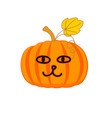cute pumpkin with a cat face vector image