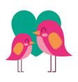 beauty birds lovely heart love decoration vector image