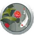 Koi carp and Lotus flower vector image