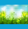 nature spring background vector image vector image