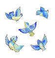 set of flying blue birds watercolor vector image vector image