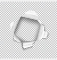 torn paper realistic hole in sheet paper vector image