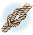 watercolor hand drawn nautical knot vector image vector image