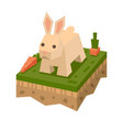 3d isometric flat style rabbit vector image vector image