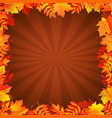 autumn background with leaves border vector image vector image