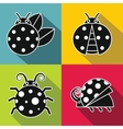 Black ladybug with white stroke on color vector image