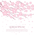 Cherry blossom card Flowering branch vector image vector image