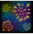 Fireworks on a colorful sky vector image vector image